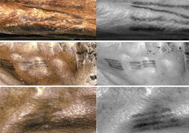 Des tatouages d'Ötzi présentés sur le site du musée archéologique du Haut-Adige
